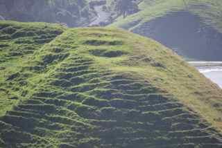 Maori pa, a fortified village